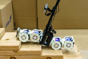 Autonomous Modular Robots